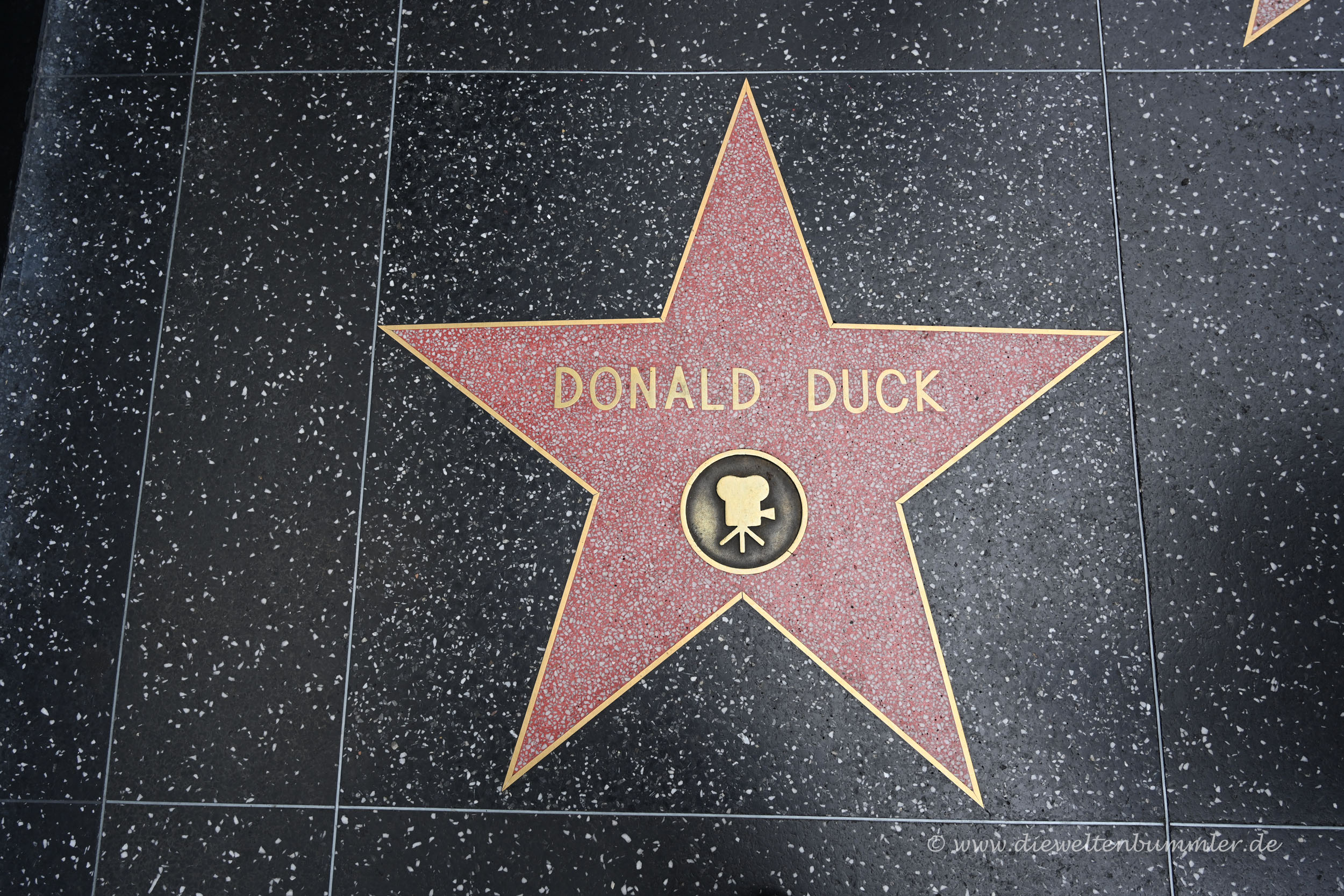 Donald Duck auf dem Walk of Fame