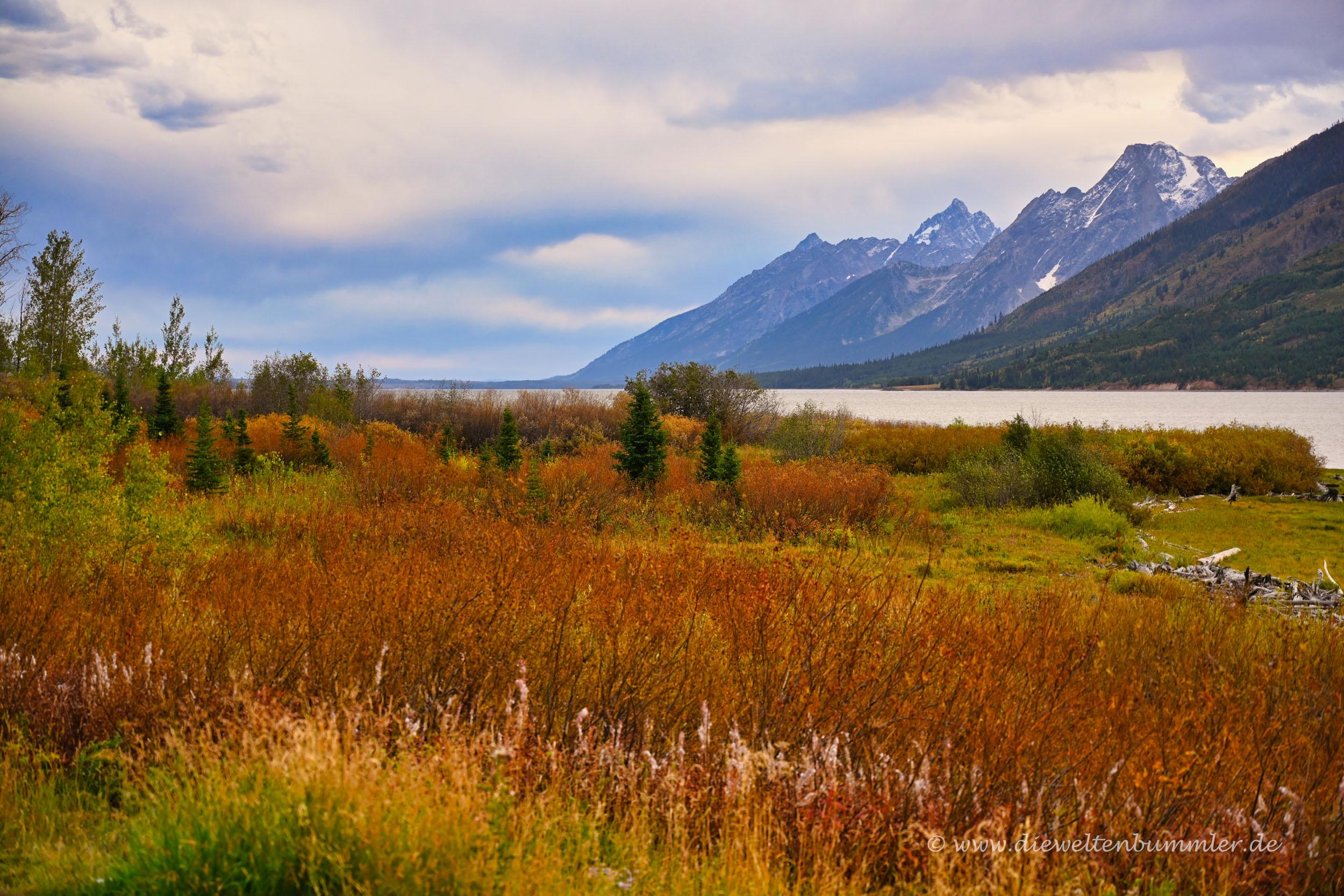 Nationalpark im Herbst