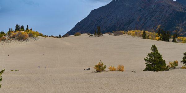 Wüste im Yukon