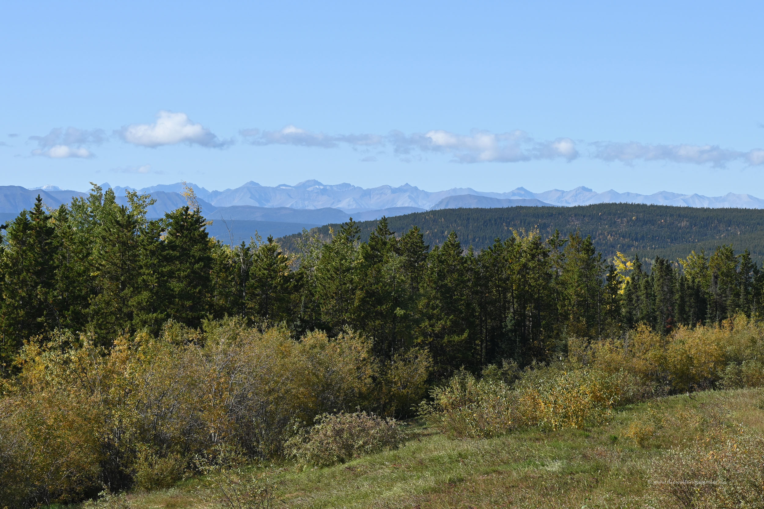 Aussichtspunkt vor den Northern Rockies
