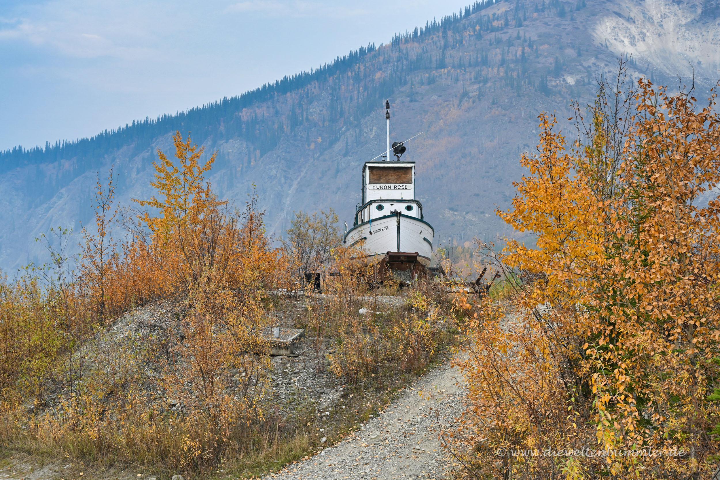 Das alte Schiff Yukon Rose