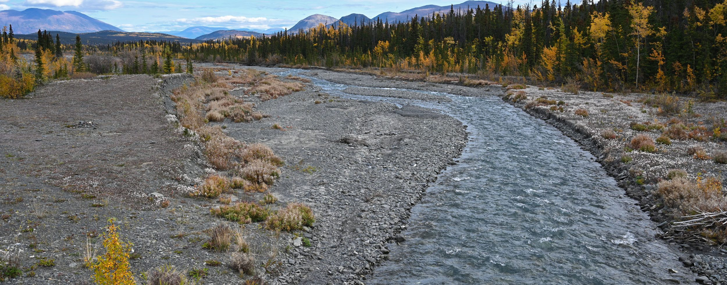 Quill Creek im Kluane Nationalpark