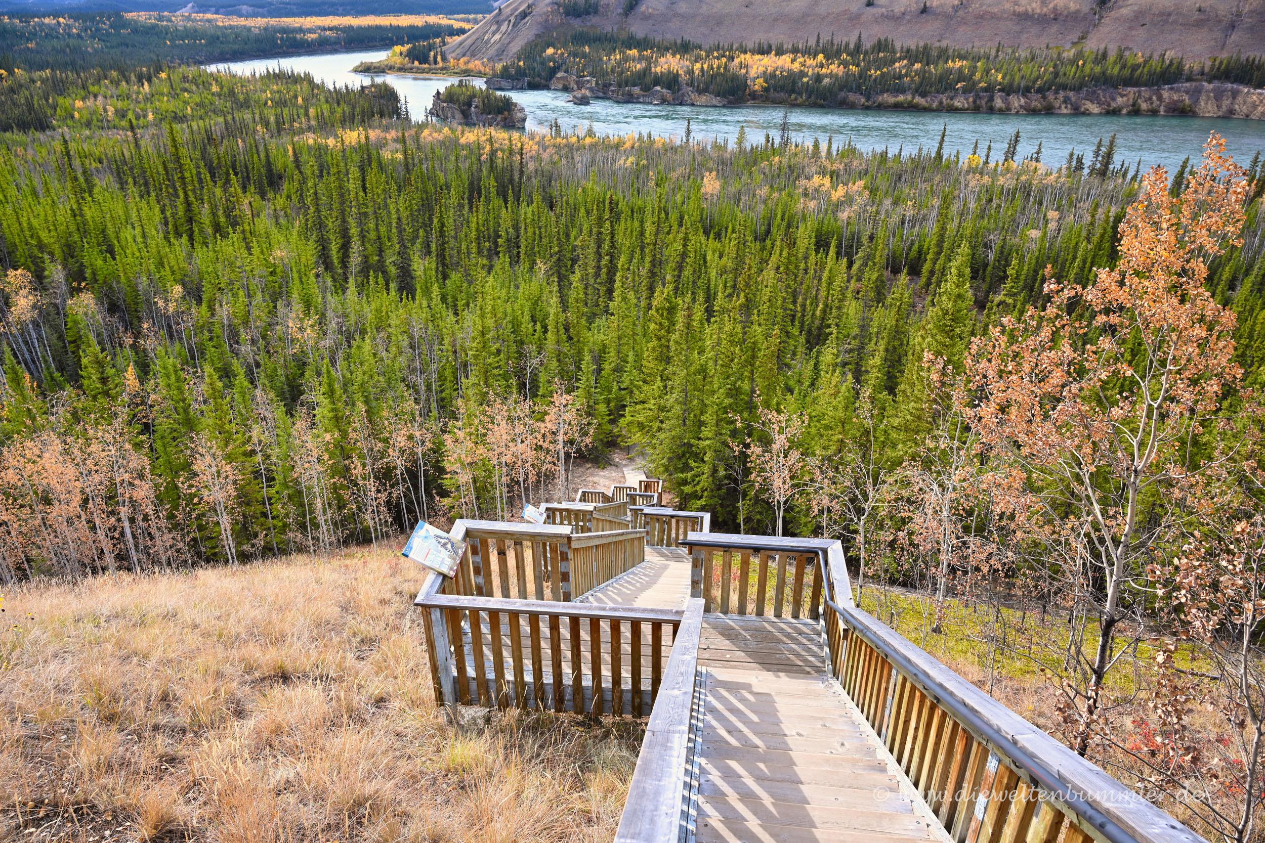 Treppe hinab zu den Five Finger Rapids