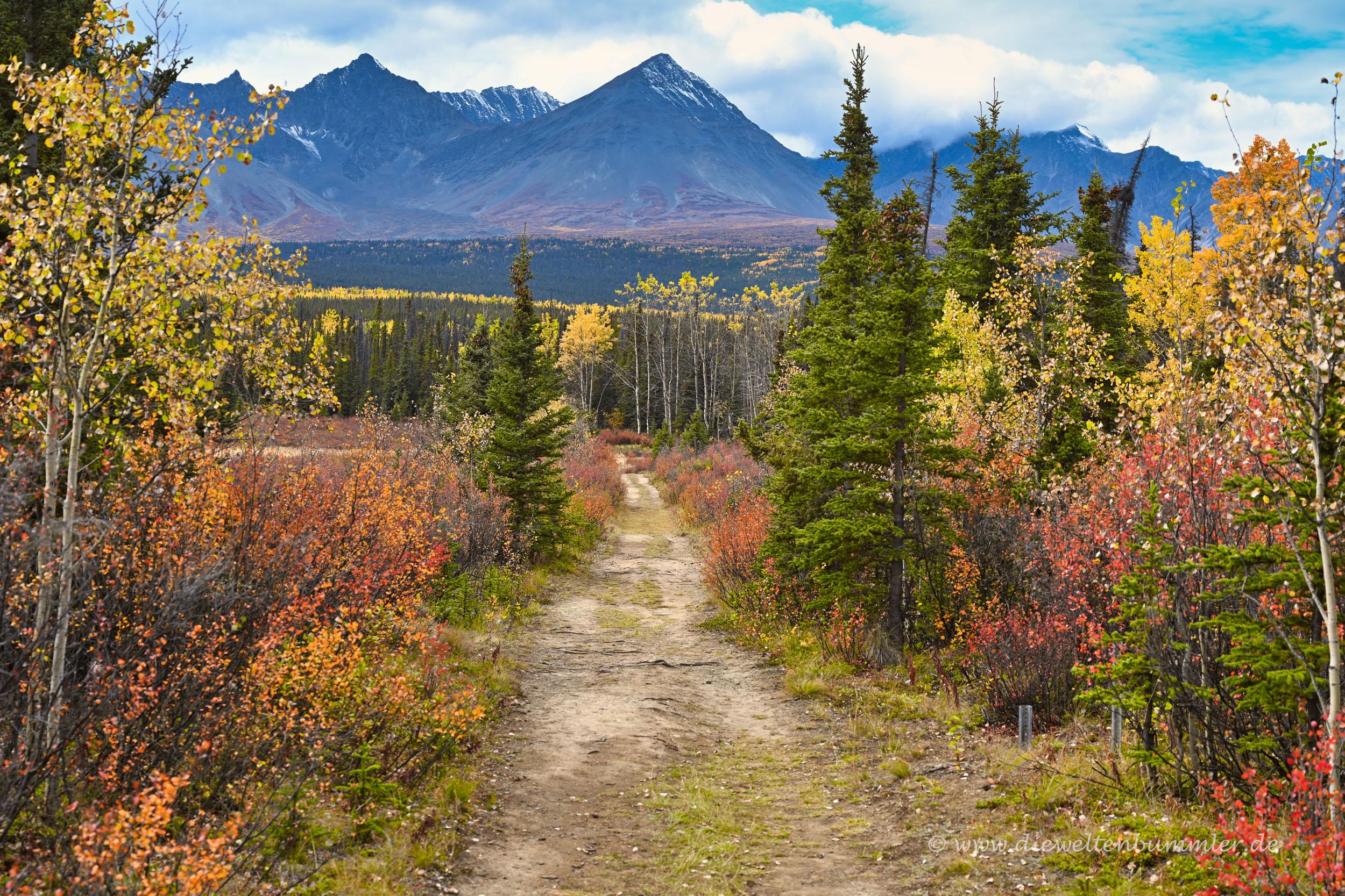 Wanderweg in die Berge