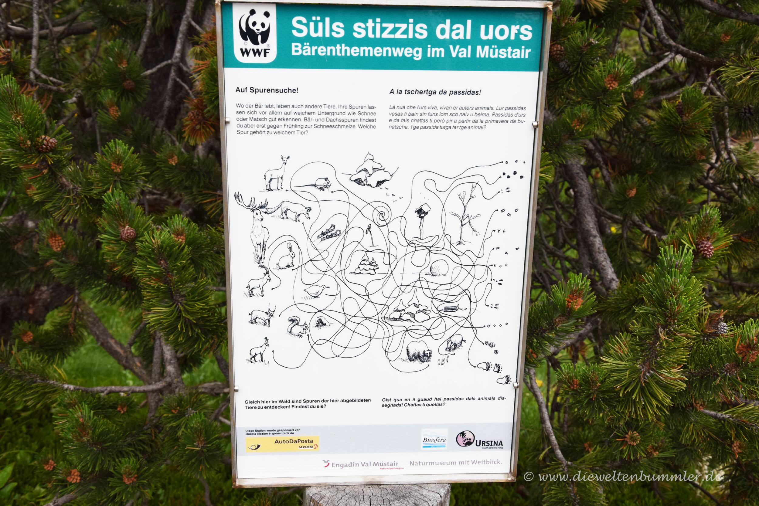 Bären-Themen-Wanderweg