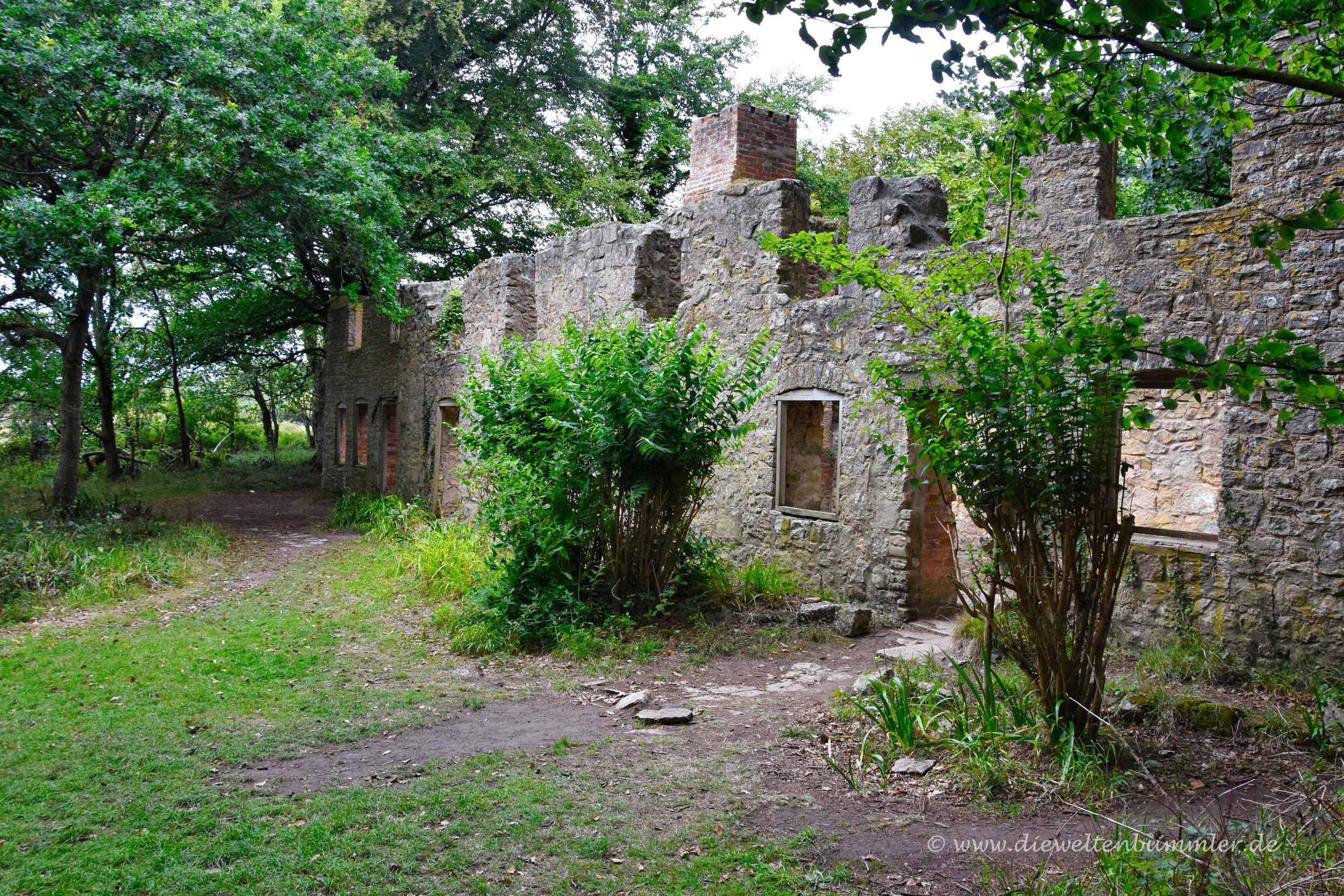 Ruinen in Tyneham