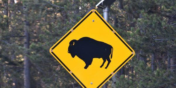 Warnhinweis im Yellowstone