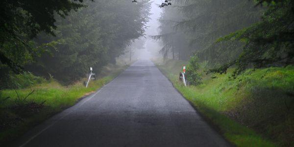 Auf dem Weg durch den Böhmerwald