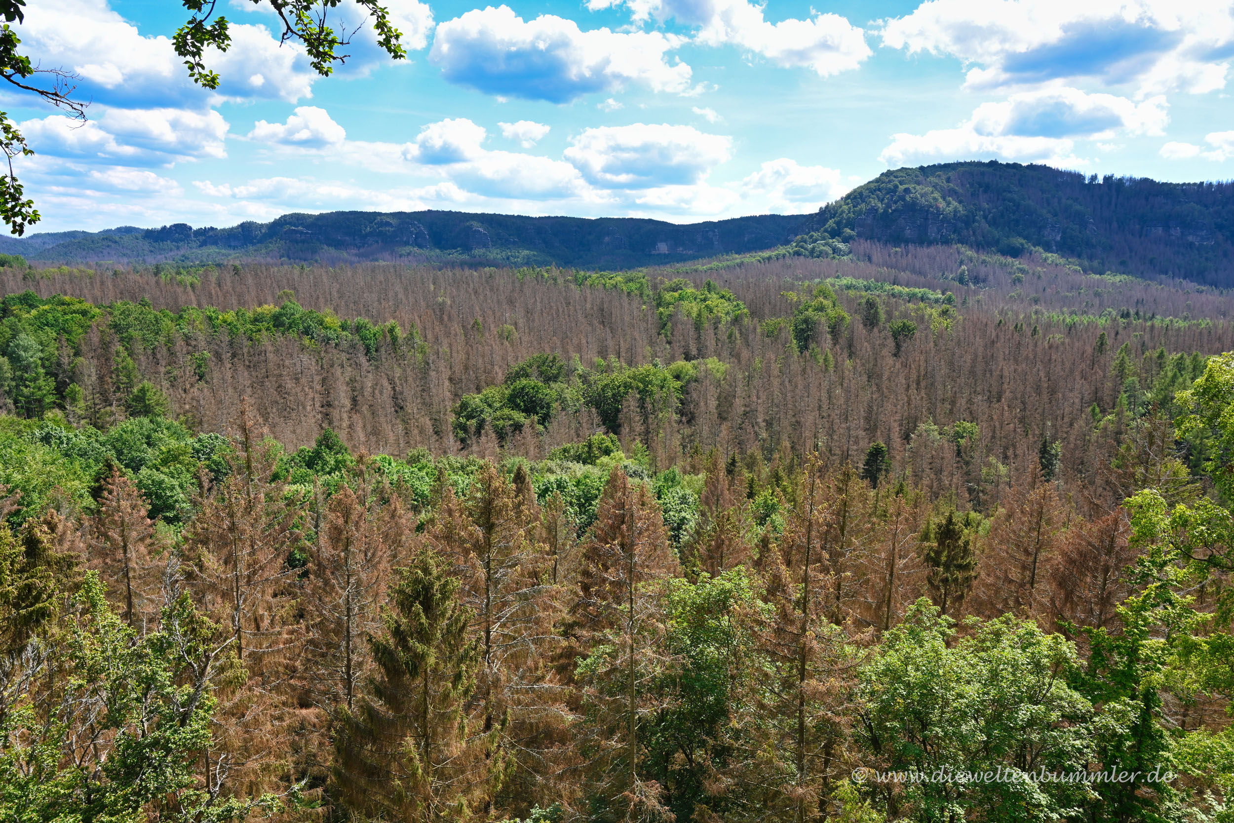 Landschaft am Kuhstall