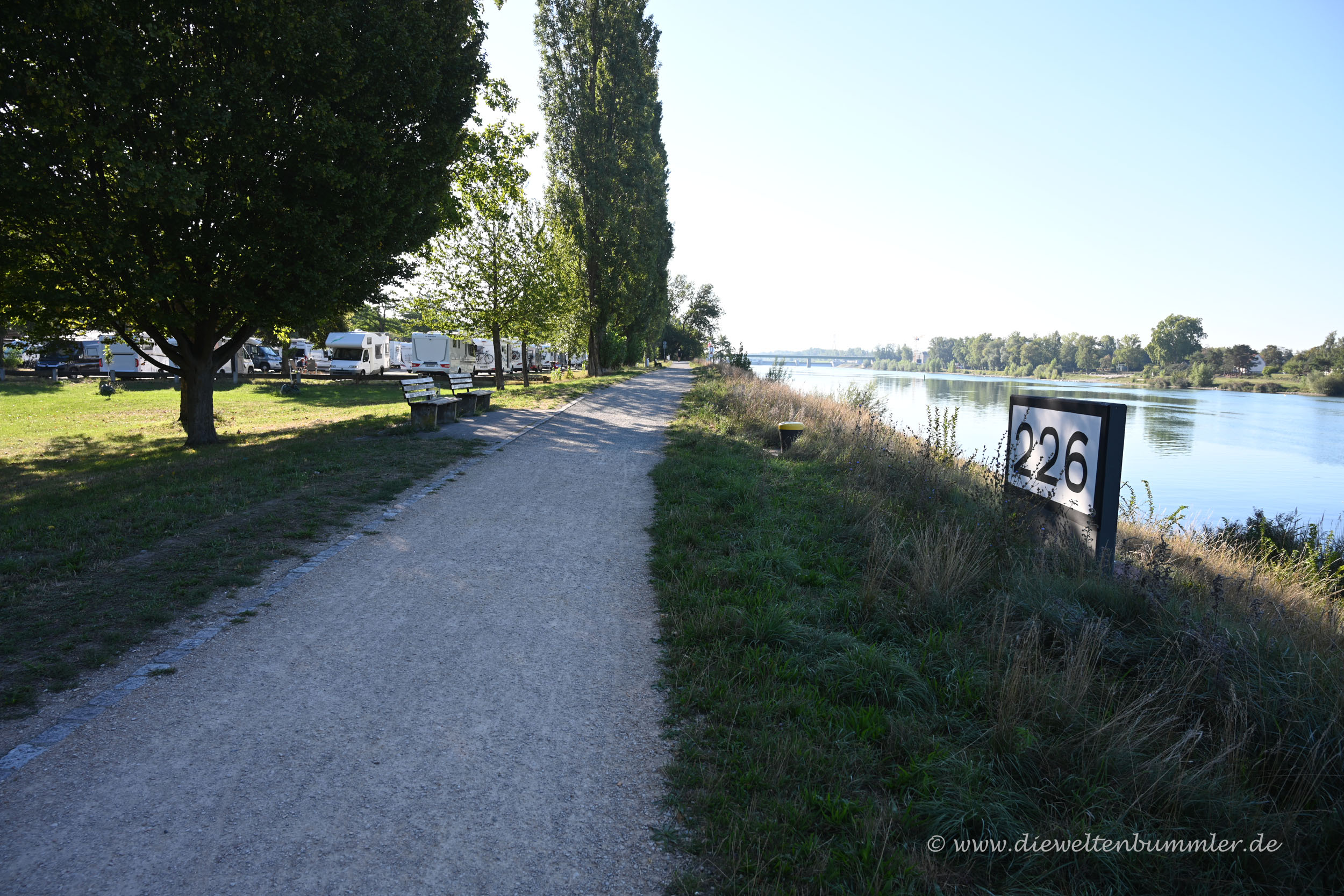 Rhein bei Breisach