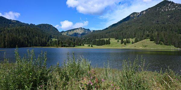 Landschaft am Spitzingsee