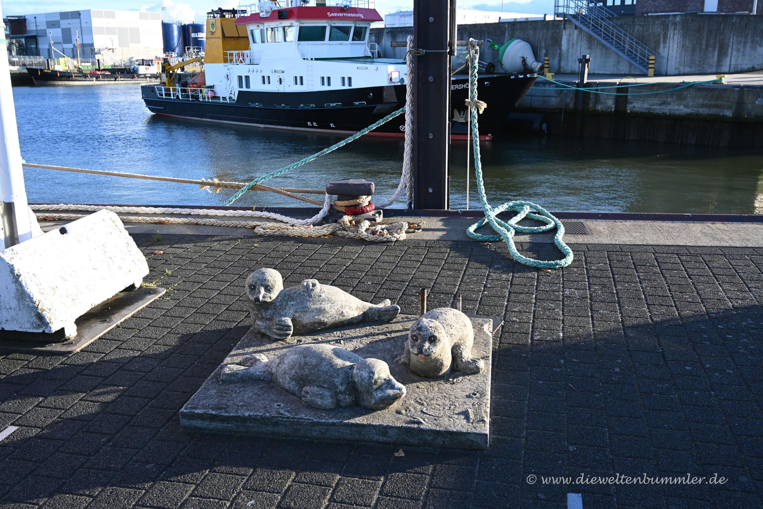 Drei Robben